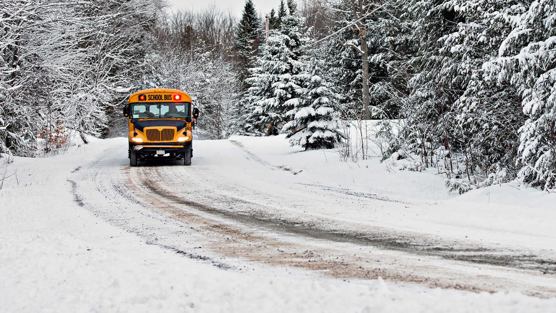 Montana Schools Property and Liability Insurance Plan - PayneWest Insurance